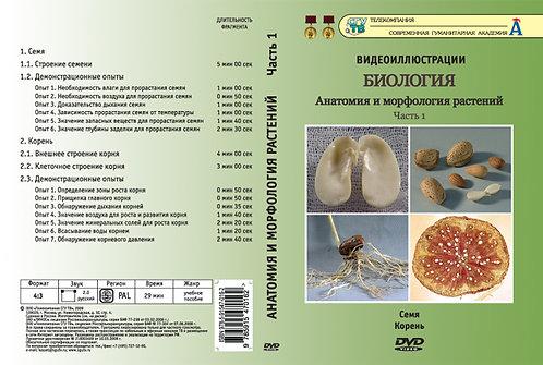 DVD Анатомия и морфология растений ч. 1 (Семя. Корень)