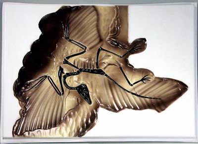 Барельефная модель Археоптерикс
