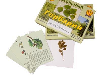 """Гербарий """"Растительные сообщества. Лес"""" (9 видов, 10 планшетов, с иллюстрациями"""