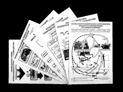 """Комплект таблиц по экологии """"Экосистема-экологическая единица окружающей среды"""""""