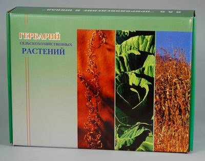 Гербарий Сельскохозяйственные растения России (28 видов)