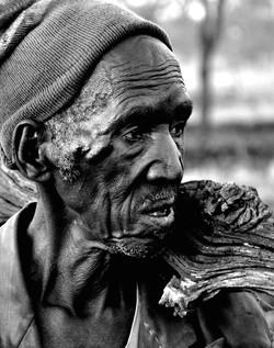 Wood gatherer