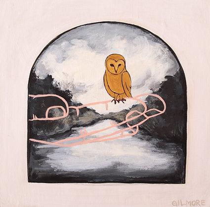 Owl In The Bog