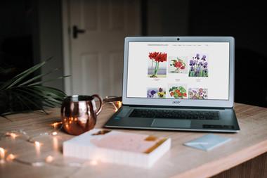 Christopher Ryland Website.jpg