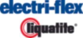 Eflex Duo Logo.jpg