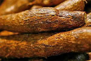 Baka med cassavamjöl - också nyttigt!