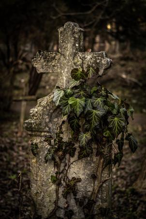 Izbégi temető, Szentendre