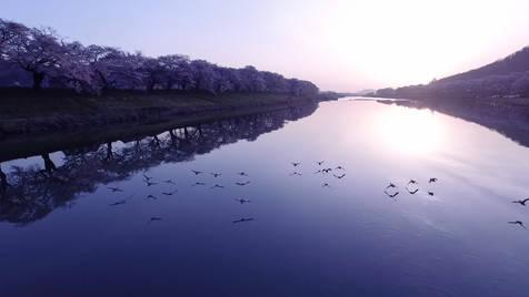宮城県 観光PV「光に出会う旅」