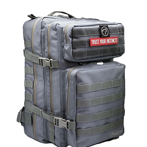 45L BACKpak Selenite Gray