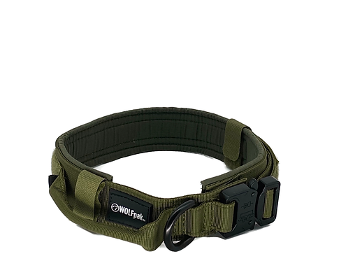 Tactical Nylon Dog Collar Green