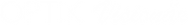 Optik Visionaer Logo weiße Schrift