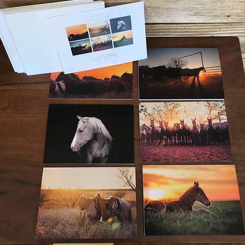 Horse Collection | Notecards