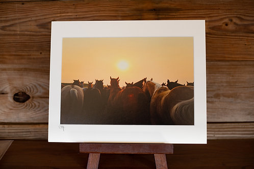 11x14 Matted Print
