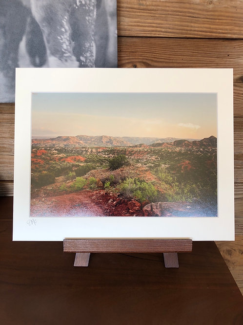 11 x 14 Matted Print