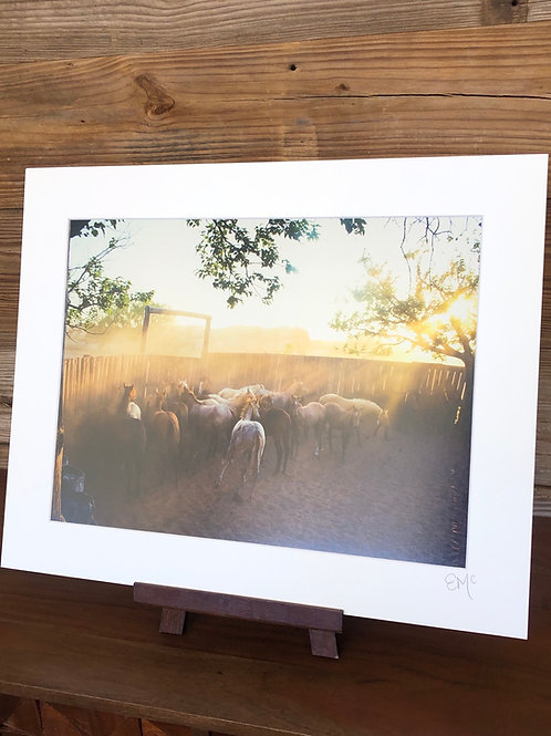 16x20 Matted Print