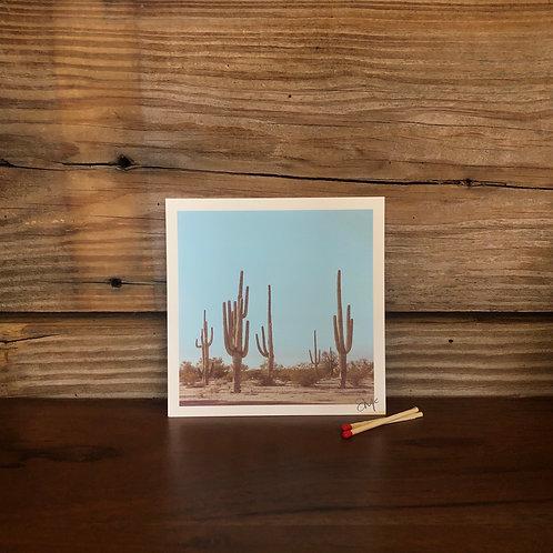 "4x4 Mini Print ""Sonoran Desert Soldiers"""