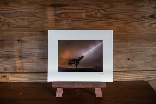8x10 Matted Print
