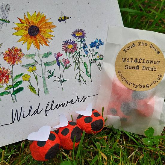 Ladybird Wildflower Seed Bombs Favour