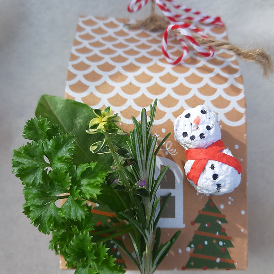 Herb seed snowman gift set
