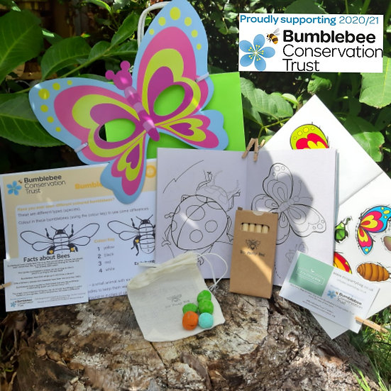 Bumblebee Conservation Trust Activity Bag - Butterfly Mask And Sticker Book