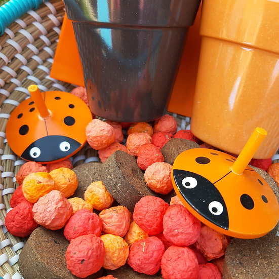 Halloween colours Bamboo Pot, Compost and Wildflower Seed Bomb