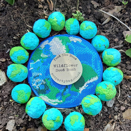 Planet Earth Wildflower Seed Bombs Favour
