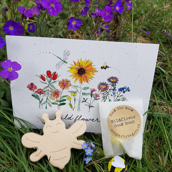 Wooden Bee And Seed Bomb