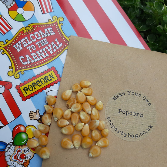 Make Your Own Popcorn Party Favour - With instructions