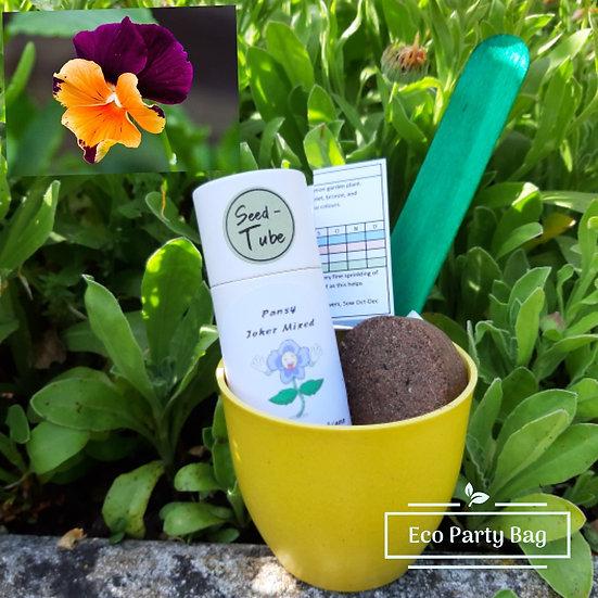 Exclusive Pansy 'Joker' Seed Tube Bamboo Pot Set