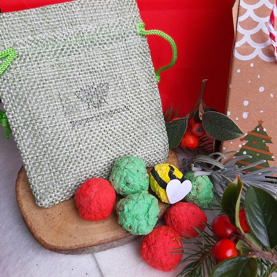 Christmas Wildflower Seed Bombz x 6 and bumblebee bomb