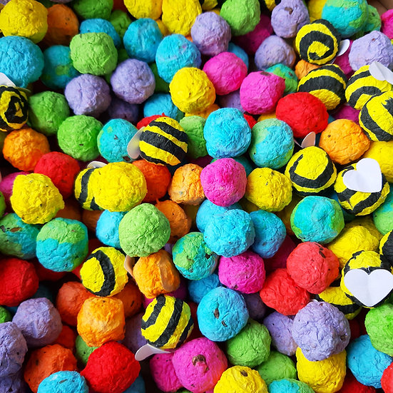 Bee, Earth And Rainbow Seed Bomb Pack of 3