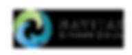 Navitas Logo.png