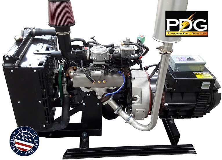 FORD 25 kW Propane/Natural Gas Generator