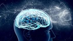 cerebro-memoria-cabeca-1016-1400x800