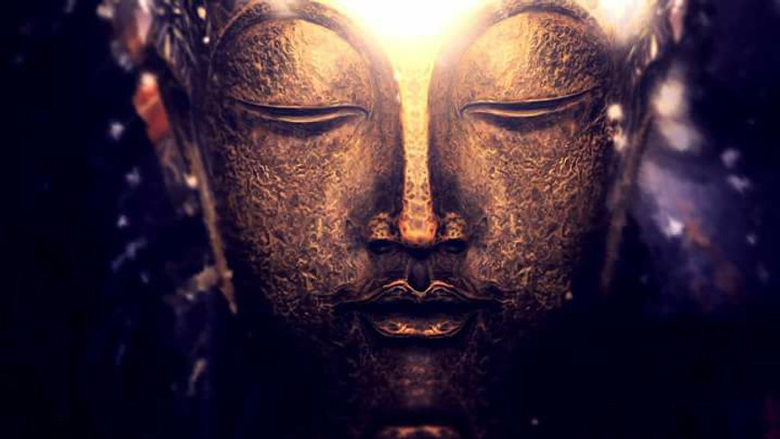 Meditção com Ayahuasca