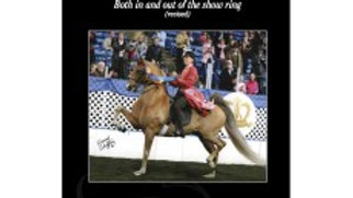 Riding For Success: Both in and out of the show ring (revised) by Gayle Lampe (P
