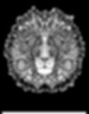 Lion NumiaH, rappelle notre souveraineté d'être humain