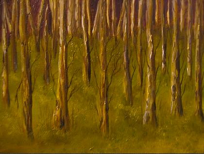 Sozinhos no Bosque