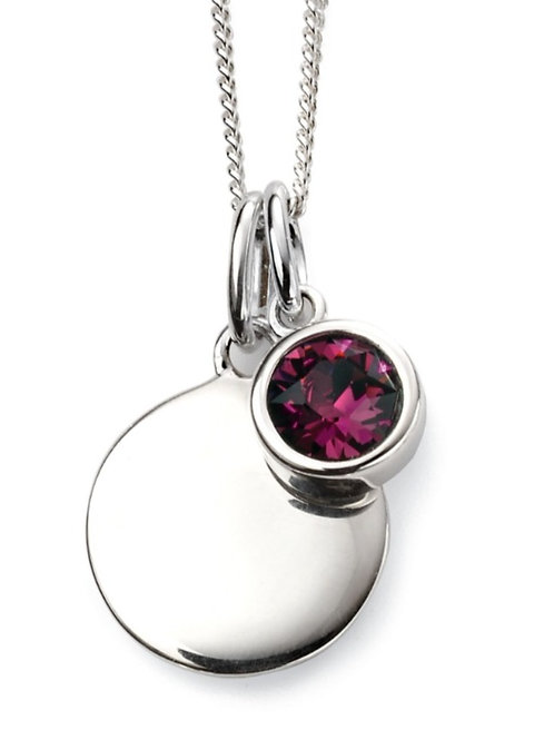 February Birthstone And Engravable Disc Necklace P4591