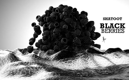 BlackBerry_02.png