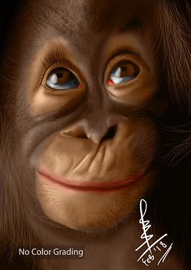 Monkey Digital Painting.png