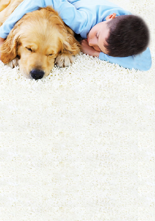 kid and dog on clean white carpet from Clean Rite
