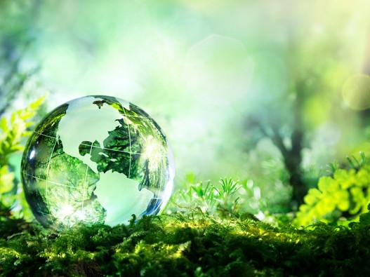 Objetivos para un Desarrollo Sustentable (ONU)