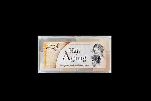 Skin Illustrator Mortuary Hair Graying Palette