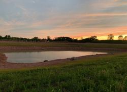 Golden Hour - Pond