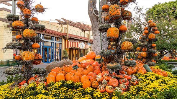 Autumn in Downtown Disney
