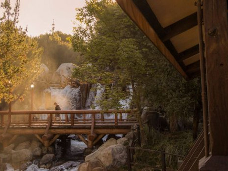 A Walk in the Park: Grizzly River Run at Disney California Adventure Park