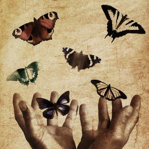 Hands letting go of butterflies