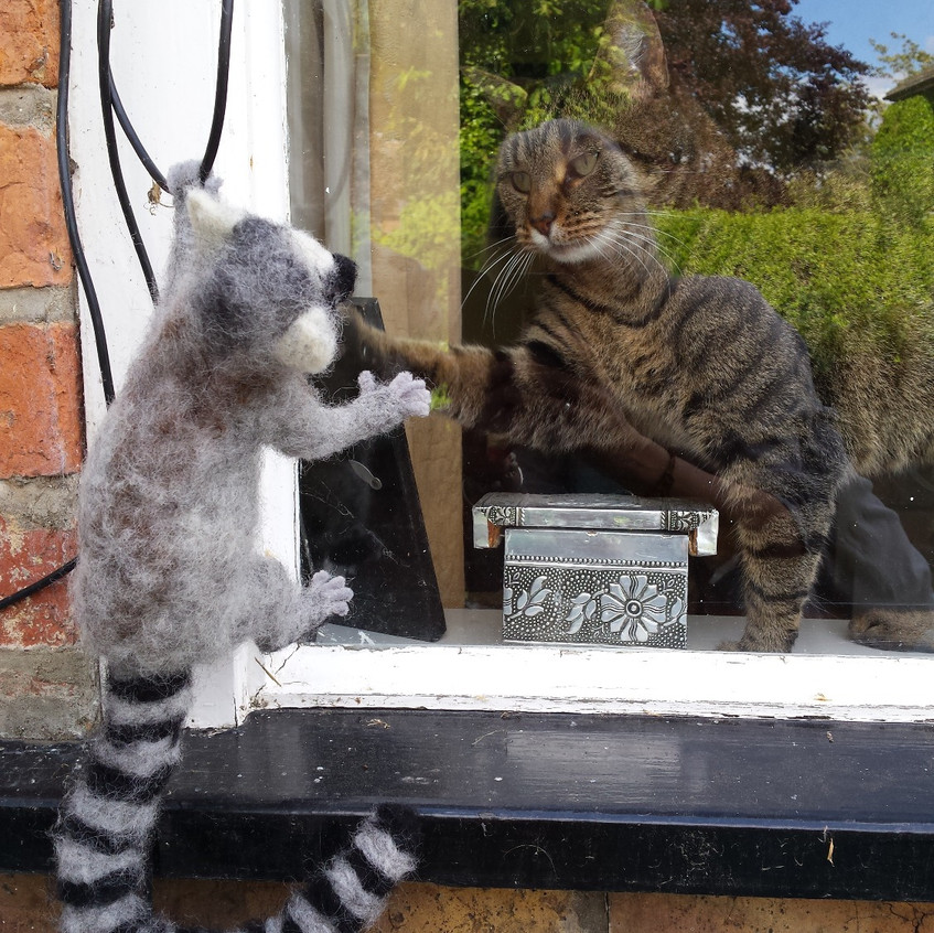 Smonks and the Lemur
