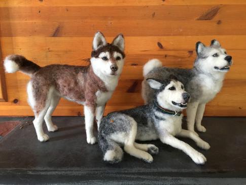 ChicktinCreations-Huskies